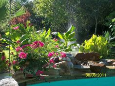 Landscaping - flowers