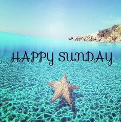 Sunday Morning Humor, Good Morning Sunday Images, Good Morning Greetings, Good Morning Good Night, Morning Wish, Good Morning Quotes, Sunday Gif, Sunday Wishes, Happy Sunday Quotes