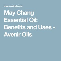 May Chang Essential Oil: Benefits and Uses - Avenir Oils