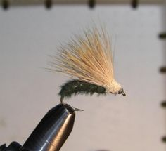 Furry Foam Caddis