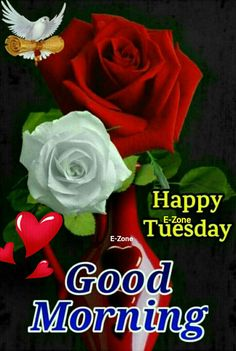 Good Morning Tuesday, Happy Tuesday, Good Morning Flowers Pictures, Days Of Week, Morning Greetings Quotes, Olympic Gymnastics, Sai Baba, Blessings, Beautiful Flowers