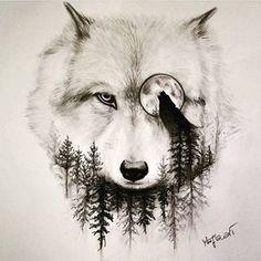 Kết quả hình ảnh cho desenhos de lobos realistas