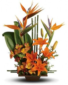 Teleflora's Exotic Grace Flowers, Teleflora's Exotic Grace Flower Bouquet - Teleflora.com - Send good feng shui someone's way with this striking arrangement. Orange flowers, gorgeous green ti leaves and small bamboo-like canes are arranged in a balanced, Zen-like composition.