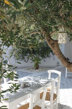 Greece - Olive trees and white patterned tiles Outdoor Rooms, Outdoor Gardens, Outdoor Living, Lazy Summer Days, Outside Living, White Gardens, Mediterranean Style, Dream Garden, Garden Inspiration