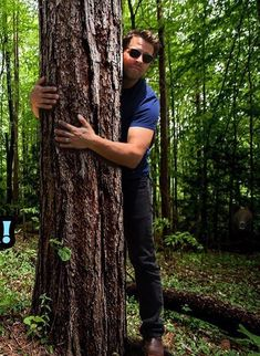 Misha hugging a tree.