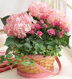 Pink Hydrangea's in basket ...Beautiful! #flowers #floral