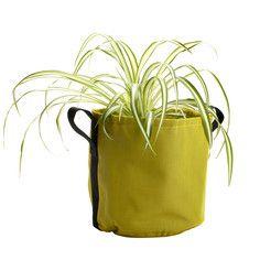 My design inspiration: Planter 10L Avocado on Fab.