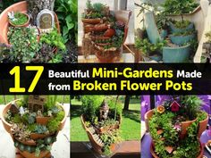 mini-gardens-made-from-broken-pots