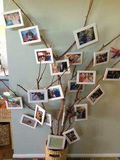 A belonging tree at Oac Cammeray 3 Campus.https://www.facebook.com/OnlyAboutChildren