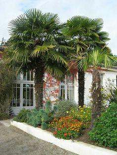 Berder, Morbihan, Brittany, France