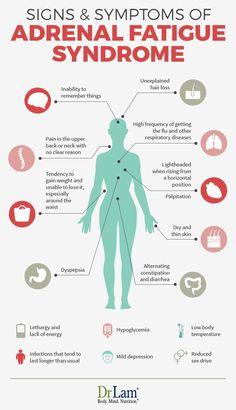 Fatiga Adrenal, Adrenal Fatigue Symptoms, Adrenal Health, Adrenal Glands, Diverticulitis Symptoms, Adrenal Stress, Kidney Health, Gut Health, Dr Oz
