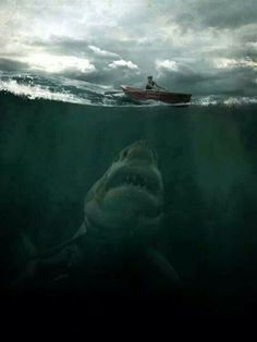 Oh oh... jaws inspired