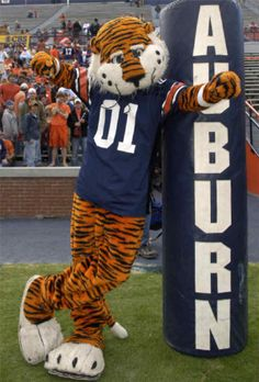 Aubie! The wonderful Tiger my fish was named after! It better not fail me tonight baby!!! War Eagle!!!