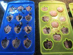 Elderberry Gummies for Cold, Flu and Sleep | Real Food RN
