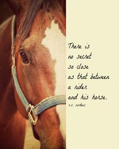 There is no secret so close as that between a rider and his horse...