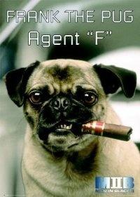 Agent F