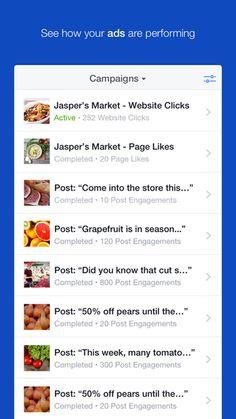Gestione Inserzioni Facebook