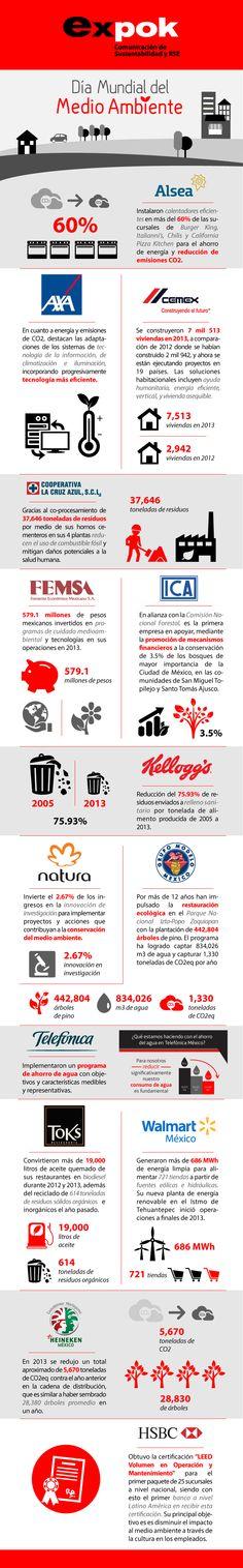 Infografía: 15 logros empresariales en pro del medio ambiente