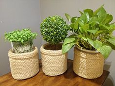 ⚜️ Add charm to your home with OrganizerPro Jute Planter Baskets pcs- Jute Storage Baskets Storage Bin Plant Holders Flower Woven Baskets Rope Basket Natural Fiber Basket, Plant Pot Cover Basket from Jute Storage Bin, Storage Baskets, Toy Storage, Gift Baskets, Plant Basket, Rope Basket, Artificial Plants And Trees, Artificial Flowers, Landscaping Tips