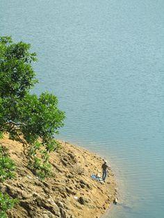 Fishing at Shing Mun Reservoir 城門水塘垂釣