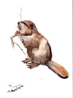 Beaver Original watercolor painting 12 X 9 in by ORIGINALONLY