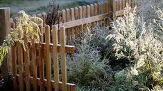 Vom letzten Schnitt bis zum Frostschutz erklären wir Ihnen, wie Sie den Garten winterfest machen.