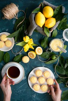 An easy recipe for lemon tartlets with lemon curd. Sweet pastry shells make the perfect container for the best lemon curd ever – it's so silky and smooth. Easy Thanksgiving Recipes, Easy Holiday Recipes, Summer Dessert Recipes, Keto Dessert Easy, Party Desserts, Healthy Dessert Recipes, Fruit Recipes, Delicious Desserts, Lemon Custard