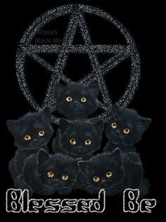 ~Blessed Be the kitties~