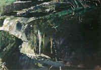 waterfall_andrew_wyeth.jpg (46272 bytes)