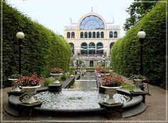 Kölner Ecken: Kleiner Abstecher in die Kölner Flora
