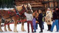 "Our sleigh ride; first time I felt a ""winter Wonderland"" (as an Az girl) Keystone CO 2006"