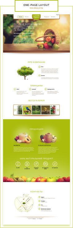 Juice Plant website by Tibor Tovt, via Behance
