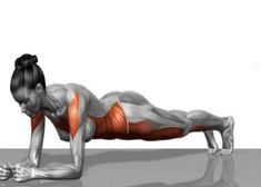 Top 5 Exercises For Women Over 40 Should Do Every Week! A woman's body goes through many changes when she grows older, and the body you've at forty may be drastically different from the one you had… Benefits Of Strength Training, Strength Training Workouts, Easy Workouts, At Home Workouts, Exercise Workouts, Toning Workouts, Workout Abs, Fitness Exercises, Workout Videos