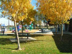 lime street park