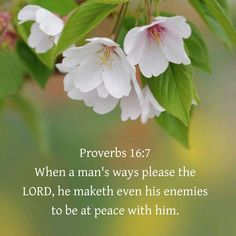 Proverbs 16:7 KJV Love Scriptures, Healing Scriptures, Encouraging Bible Verses, Scripture Verses, Joy Of The Lord, Love The Lord, God Is Good, Proverbs 16 7, Sisters In Christ