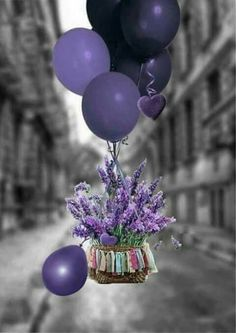 Purple balloons and flowers, oh my Happy Birthday Wishes Cards, Birthday Wishes And Images, Happy Birthday Flower, Wishes Images, Birthday Pictures, Best Birthday Quotes, Purple Balloons, Happy B Day, Birthday Balloons