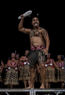 Kapahaka Maori People, Culture, Life Drawing, Moana, Drawing Reference, Belly Dance, New Zealand, Dancing, Drawings