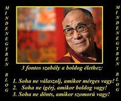Dalai láma: Qoutes, Life Quotes, In My Feelings, Buddhism, Karma, You And I, Einstein, Spirituality, Wisdom