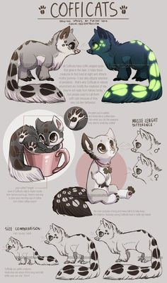 Cofficats - species sheet by Fuki-adopts on DeviantArt Cute Fantasy Creatures, Mythical Creatures Art, Cute Creatures, Cute Animal Drawings, Kawaii Drawings, Cute Drawings, Wolf Drawings, Drawing Animals, Creature Drawings