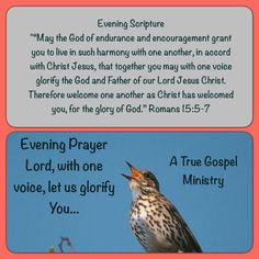 Evening Prayer Lord, with one voice, let us glorify You... #eveningscripture #eveningprayer #atruegospelministry #scripturequote #biblequote #quote #seekgod #godsword #godislove #gospel #jesus #jesussaves #teamjesus #LHBK #youthministry #preach #testify #pray #rollin4Christ