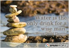 Water is the only drink for a wise man. #BackOnTrack #SparkPeople