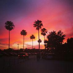 Sunset in Orlando!