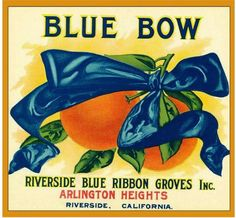 Riverside Blue Bow Orange Citrus Fruit Crate Label Advertising Art Print