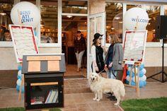 librarie-2 Labrador Retriever, Dogs, Animals, Labrador Retrievers, Animales, Animaux, Pet Dogs, Doggies, Animal