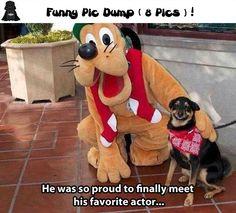 Funny Pic Dump ( 8 Pics )
