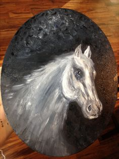 Arabian horse acrylic painting by cindy Anderson