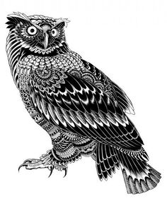Pen Decorated Animals illustrated by Ben Kwok/ Bioworkz