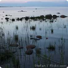 See what NWF is doing to protect the Great Lakes!