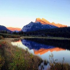 Seeing signs on fall? Check out the changing season in #Banff #rei1440project #canada #fall