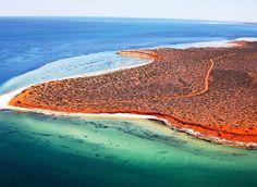 Shark Bay, Australia - The 22 Most Unbelievably Colorful Places On Earth Juneau Alaska, Alberta Canada, Australia Travel, Western Australia, Australia Beach, Perth, Australia Holidays, Australian Road Trip, Australian Bush